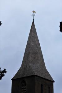 Oak Shakes, St Lawrence, Alton